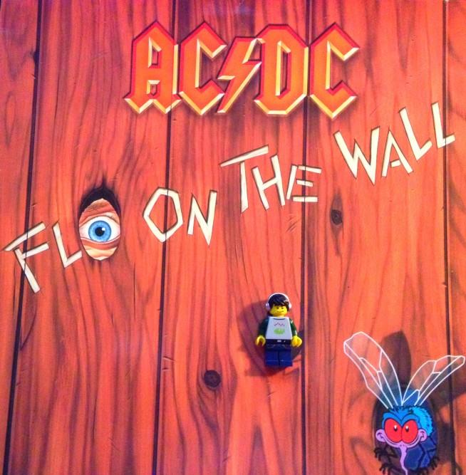 AC Fly Wall 06