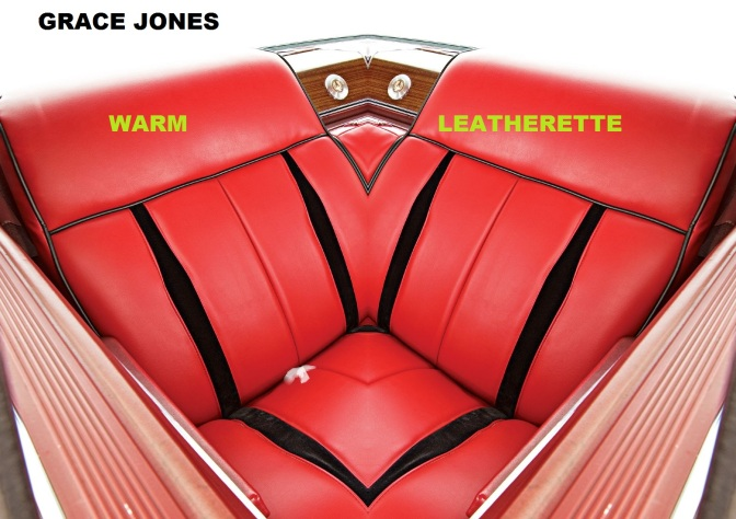 Warm Leatherette Alt Cover