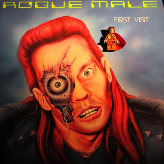 Rogue Male 07