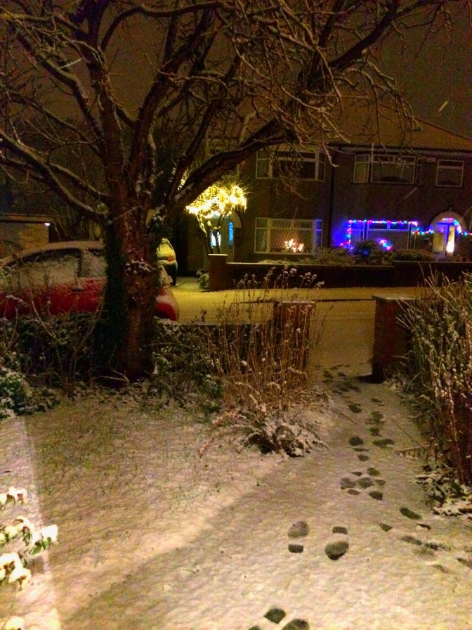 Behold Canadians and Mid-Westerner, the terrifying UK weather phenomenon known as a 'light dusting'.  As well you may tremble!