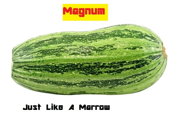 My cover design for 'Just Like a Marrow'.  What? ...