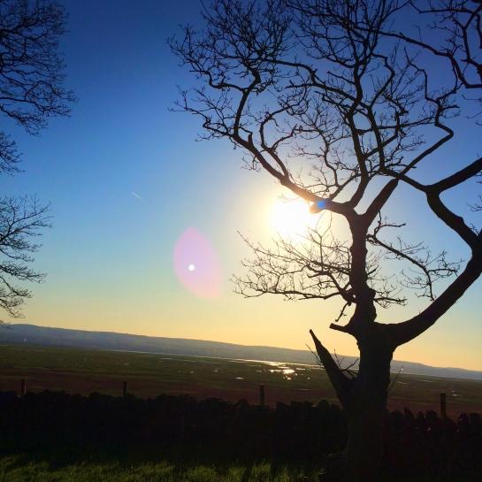 Iron Age Hill Fort Burton