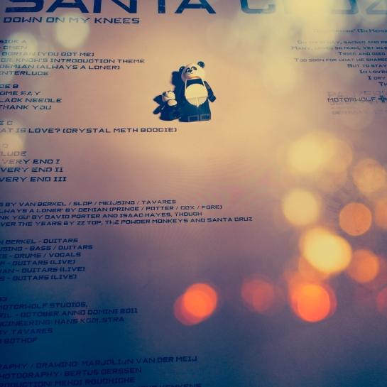 Santa Cruz Down On My Knees 04