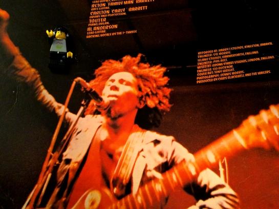 Bob Marley Natty Dread 03