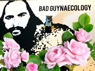 Bad Guynaecology 04 (2)