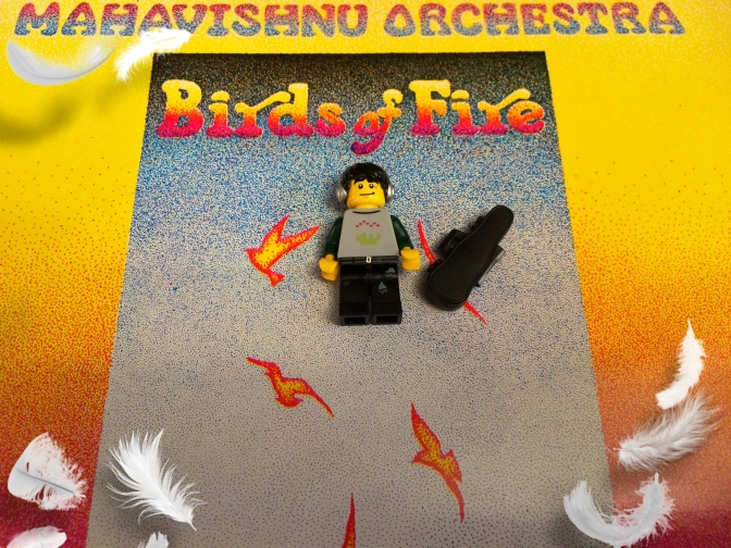 Mahavishnu Birds Of Fire 02 (2)