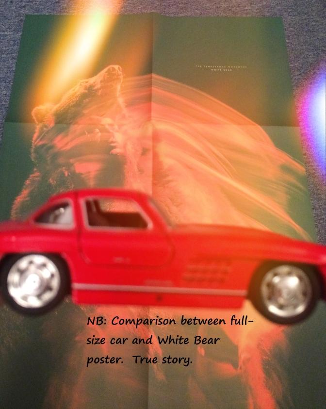 Temperance Movement White Bear 08