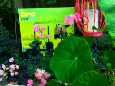I love how this one turned out!
