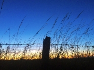 Really arty photo, to show off my mad camera skillz and sensitivite, creative nature (chicks love that)