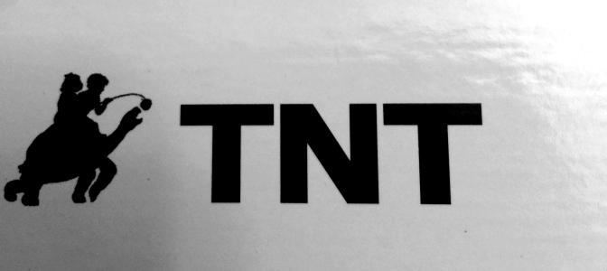 tortoise-tnt-01