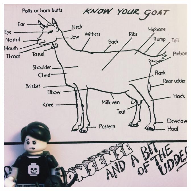goat-good-times-02