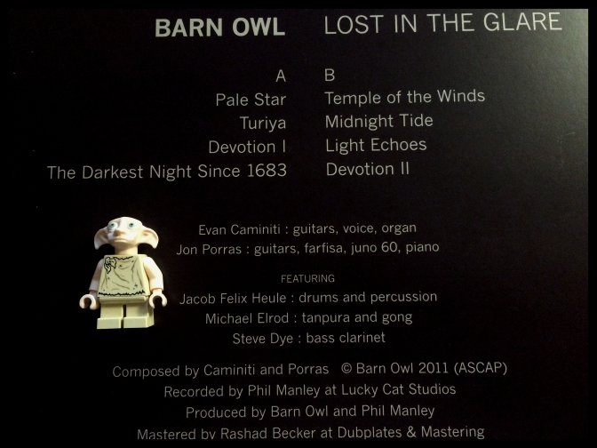 barn-owl-lost-in-the-glare-02