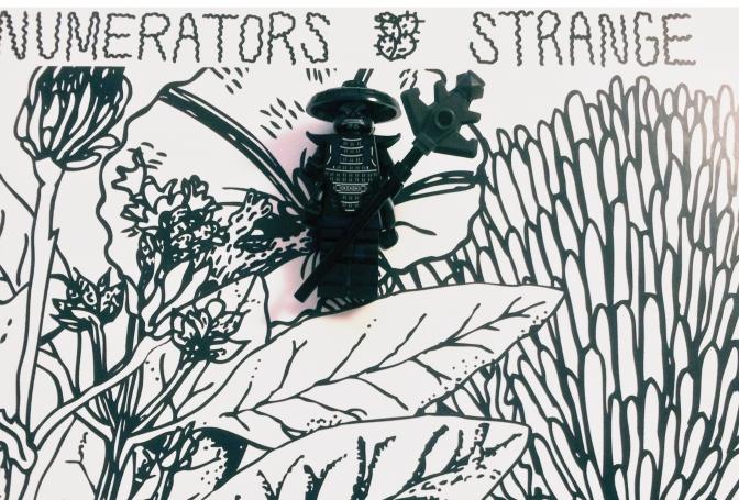 Numerators Strange 003
