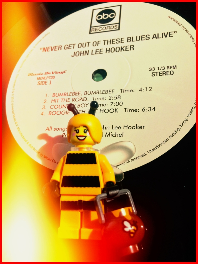 John Lee Hooker Never Get Out 01